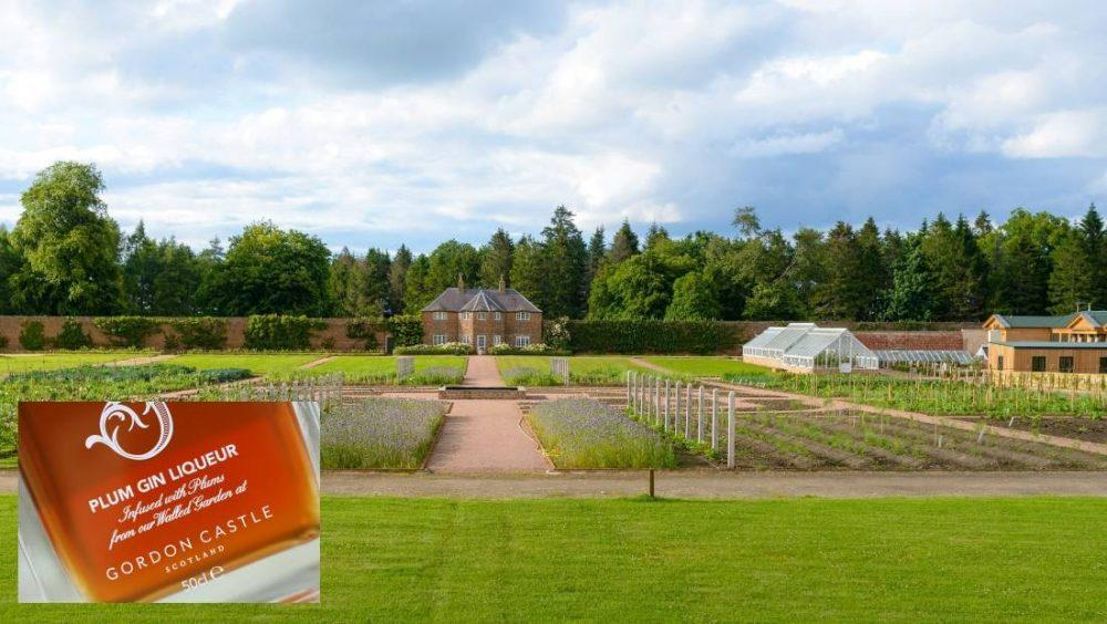 Royal Highland Show date for Gordon Castle's prime product.