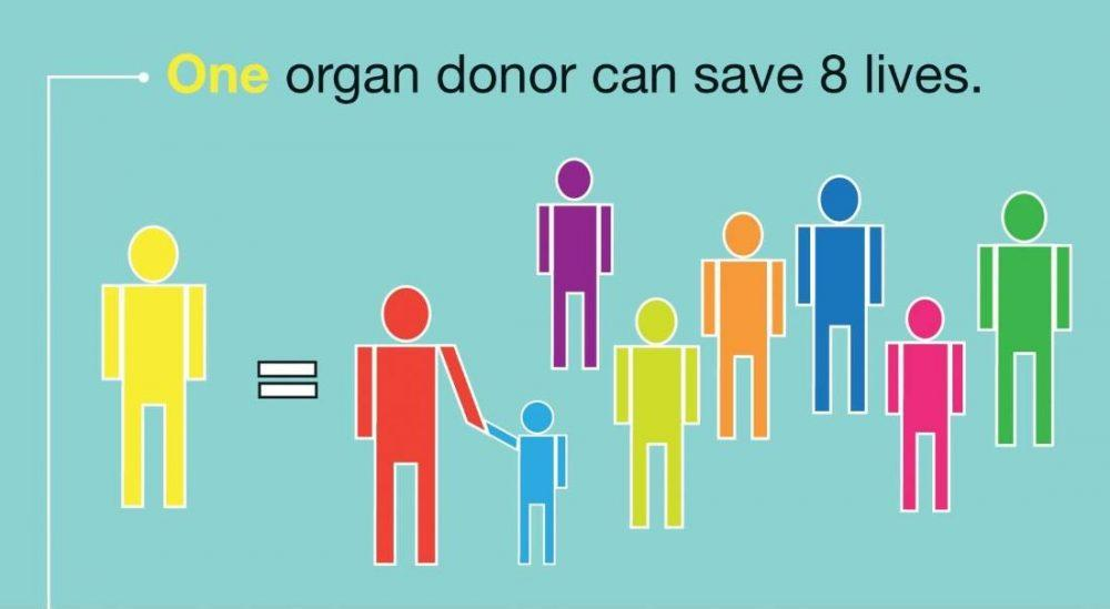 donating organs after death essay Free organ donation papers especially when it comes to organ donation after death many people probably never think about donating organs.