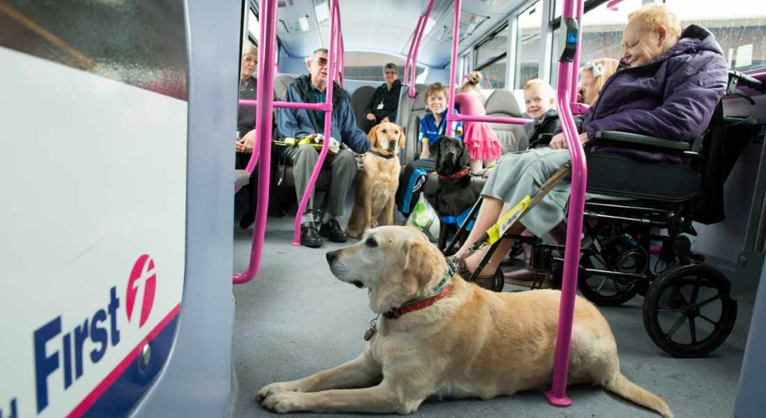 Backing For Move To Ensure Blind Bus Travellers Reach
