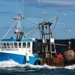 Fisheries body seeks nine-month 'bridge' in a post-Brexit UK