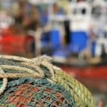 First step to be taken in regaining control of UK fisheries